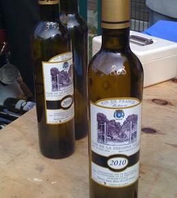 Vignes et vendanges : une visite sur les coteaux de Rosny-Sous-Bois
