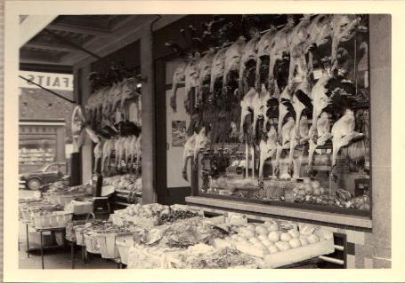 budor 1949 2