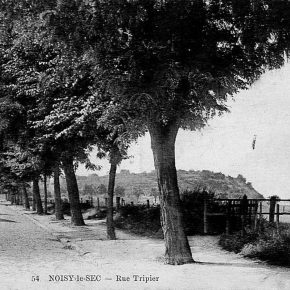 rue Tripier
